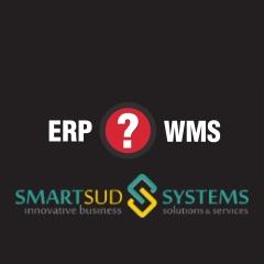 ERP WMS